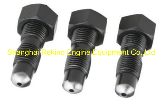 Slotted set screw 168306 CCEC Cummins KTA19 engine parts